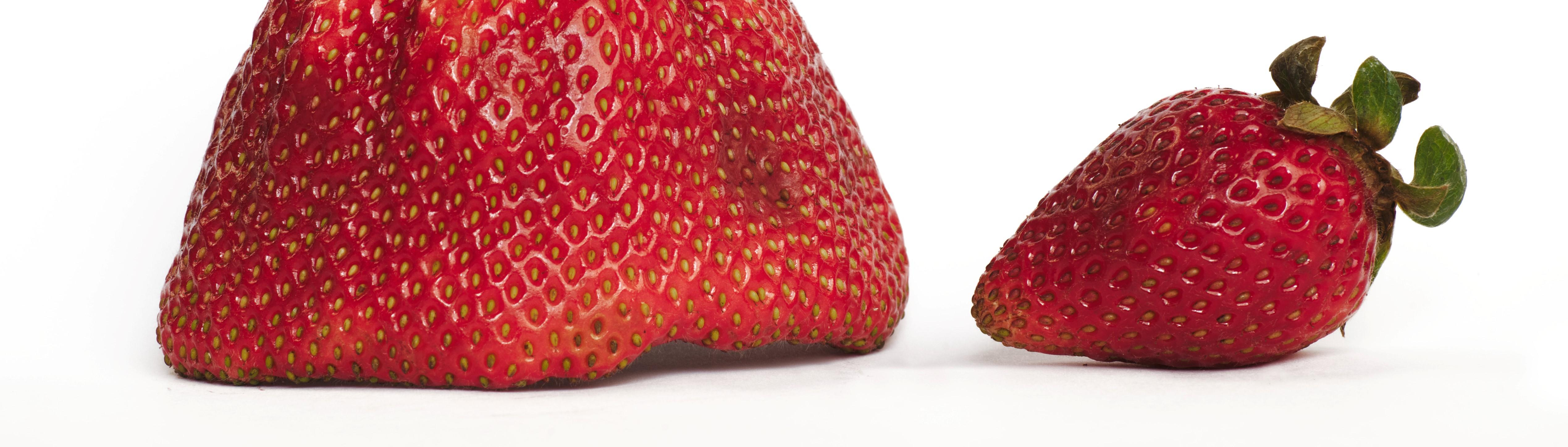 Grote en kleine aardbei